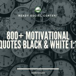 Social Content: Instagram Quotes 800+